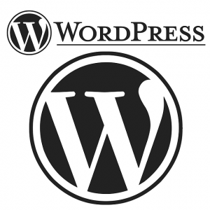 wordpress website plateform